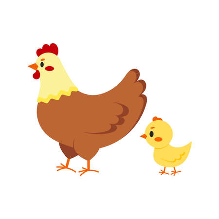 Hen and chick icon set isolated on white background. Cute farm birds family flat design cartoon style vector illustration. Funny poultry chicken family. Illusztráció
