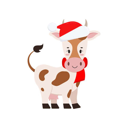Cute christmas cow vector icon isolated on white background. Farm animal happy cow with udder in santa claus red hat and scarf cartoon character. Flat style graphic xmas card design illustration.