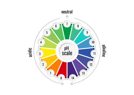 pH value scale chart meter for acid and alkaline solutions 向量圖像
