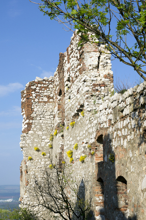 View of the wall of the ruins Devicky paved flowers in the area of Palavske hills