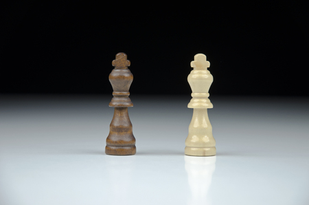 esquizofrenia: Close-up view of two chess king on blurred black and white background with reflection