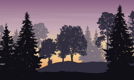pink hills: Vector illustration of mountain landscape with forest and trees under purple sky at sunrise