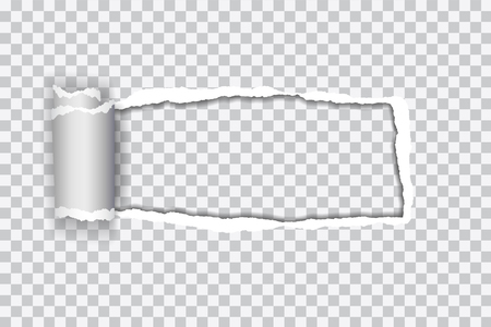 Set vector realistic illustration of transparent torn paper with rolled edge on transparent background with frame for text
