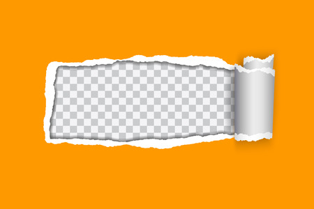 vector realistic illustration of orange torn paper with rolled edge on transparent background with frame for text