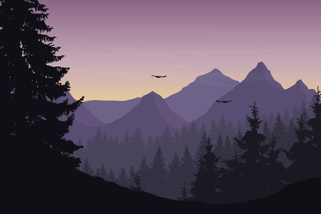 Vector illustration of mountain landscape with forest and flying birds under cloudy sky with dawn