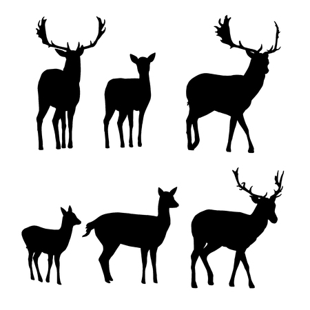 Set of vector silhouettes of deer and fallow deer with a fawn isolated on white background
