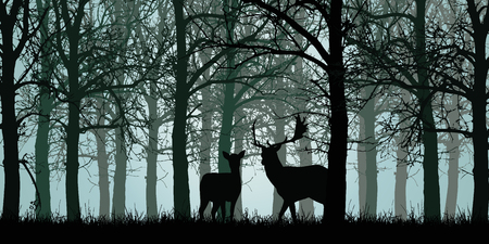 Vector illustration of deer and hind standing on grass in green forest without leaves with branches