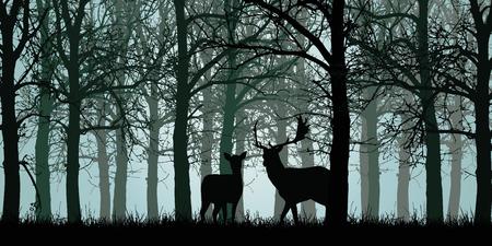 Vetorial, ilustração, de, veado, e, traseiro, ficar, ligado, capim, em, floresta verde, sem, folhas, com, ramos Ilustración de vector