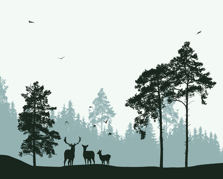 Landscape with forest, deer and flying birds - vector