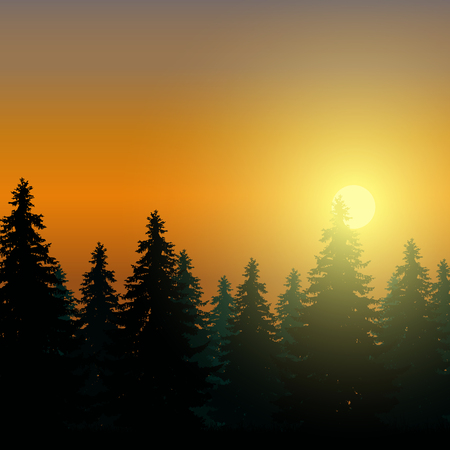 Landscape with coniferous forest under morning sky at dawn and sunlight, vector with space for text.