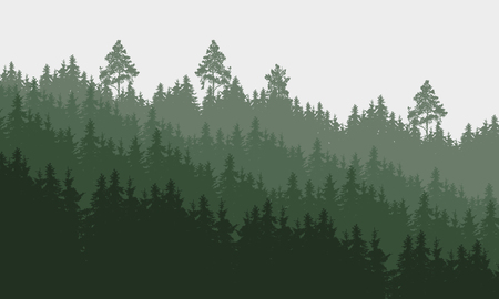 Panoramic layered illustration of a forest under a overcast gray sky.