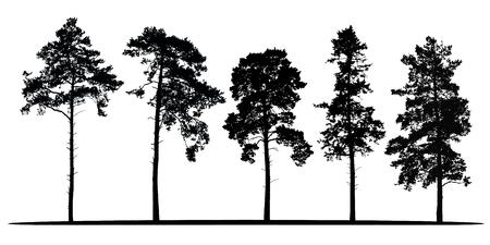 ensemble de vecteur réaliste silhouettes de conifères - isolé sur fond blanc