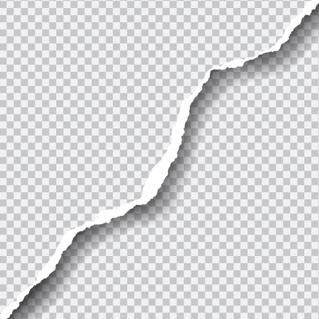 Realistic vector ripped paper with space for your text, isolated on transparent background.