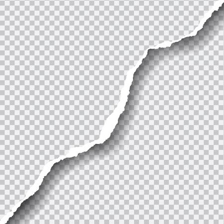Carta strappata vettoriale realistico con spazio per il testo, isolato su sfondo trasparente.