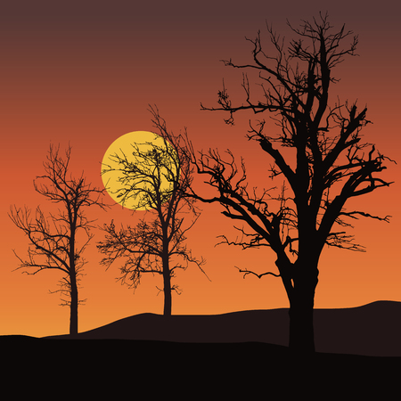 dead trees with sun or moon in background under orange sky
