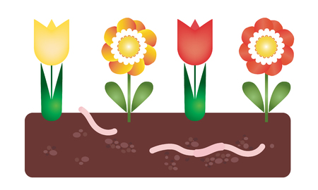 Flower bed with soil and earthworm under the ground - vector, suitable as a card for gardening and agriculture
