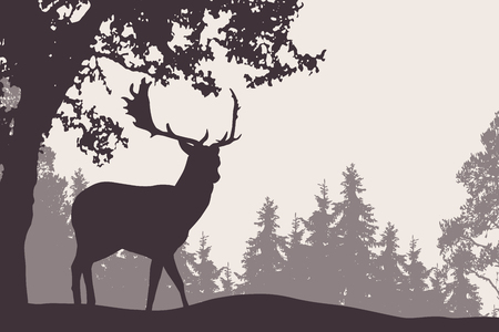 Vector illustration of a fallow deer standing under a deciduous tree with coniferous forest in the background - suitable as an advertisement for nature, travel or hunting