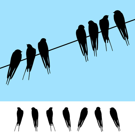 Set of realistic vector silhouettes of swallows sitting on a wire Çizim