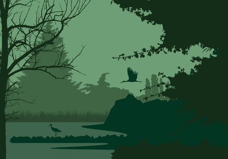 Wetlands with forest and flying and standing stork, under the evening sky - vector Illustration