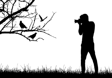 A young man in nature photographing birds sitting on tree branch - vector Illustration