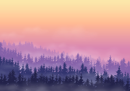 Coniferous forest in a mountain landscape with hills, with fog and clouds in the sky with purple and yellow dawn - vector