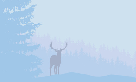 Deer with antlers standing in snowy coniferous forest with fog under blue winter sky - vector