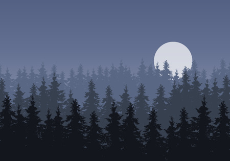 Realistic illustration of a winter coniferous spruce or fir forest under a gray night sky with a moon - vector Banque d'images - 127572706