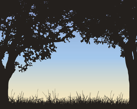 Realistic illustration of a frame of green deciduous trees and grass with a blue sky with dawn and space for your text - vector Banque d'images - 127263526