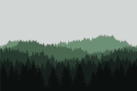 Flat realistic illustration of a green mountain landscape with coniferous forest with trees and hills under a gray sky - vector Banque d'images - 126236460
