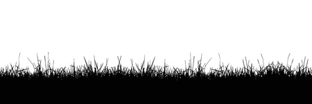 Seamless realistic illustration of a grass stalk or lawn, isolated on a white background - vector