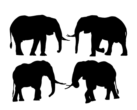 Set of silhouettes of elephants in safari, isolated on white background - vector Ilustrace