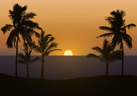 Realistic illustration of sunset over sea or ocean with beach and palm trees. Orange sky and space for text - vector Illustration