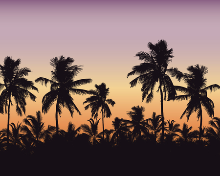 Realistic illustration of a palm forest. Purple orange sky with space for text - vector