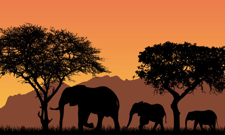 realistic illustration with silhouettes of three elephants - family in african safari landscape with trees, mountains under orange sky - vector