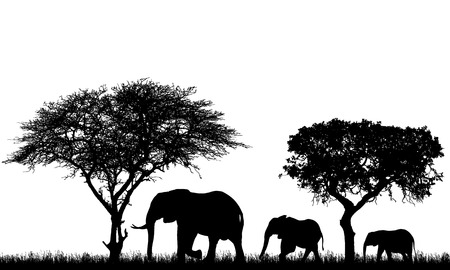 Realistic illustration of landscape with trees in african safari. A family of three elephants with a baby go in the grass - vector