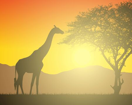 Realistic illustration of African landscape with safari, trees and giraffe under orange sky with rising sun. Mountains on the background - vector
