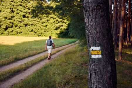Yellow sign on tree trunk in forest. Male hiker goes down a path in the grass with a backpack on his back. Фото со стока