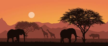 Flat design illustration of african landscape with silhouettes of safari animals. Elephant and rhino under the trees. Grazing giraffes under the orange sky - vector