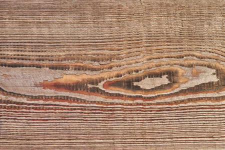 View of a wooden board made of oak trunk with annual rings and natural texture. Reklamní fotografie