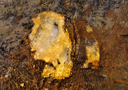 citrine: Underwater, amethyst, citrine, quartz, chalcedony, the bottom of the river Stock Photo