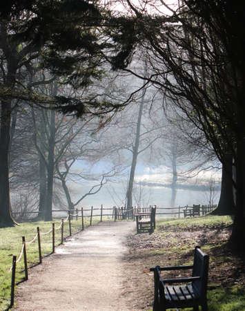Path through empty park to pond with benches in winter Stok Fotoğraf