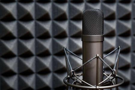 estudio de grabacion: Micrófono de tubo, micrófono profesional, estudio de grabación, sala de televisión, canción, sonido, voz, estudio, cantante