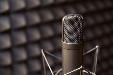 microfono de radio: Micr�fono de tubo, micr�fono profesional, estudio de grabaci�n, sala de televisi�n, canci�n, sonido, voz, estudio, cantante