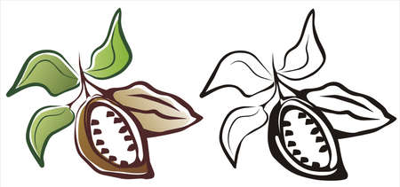 pod: cacao symbol in two variants black and color, isolated