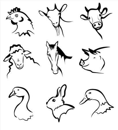 closeup cow face: farm animals collection of symbols in simple black lines  Illustration