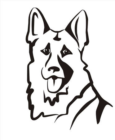 sheepdog: german sheppard isolated vector icon Illustration