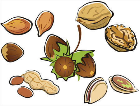 Nuts collection in cartoon style isolated illustration