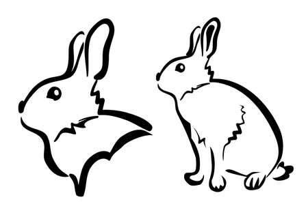 rabbit ears: rabbit sketch in black lines Illustration