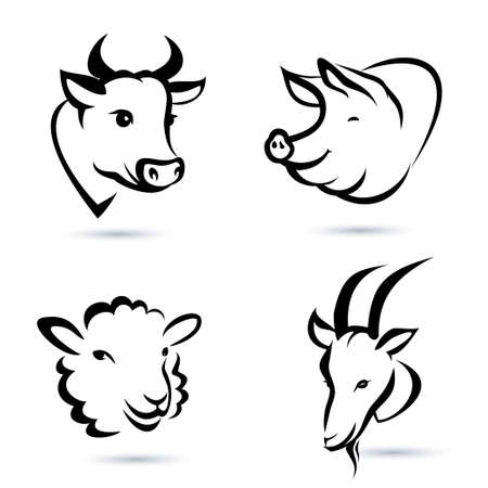 cochinos: animales de granja iconos conjunto