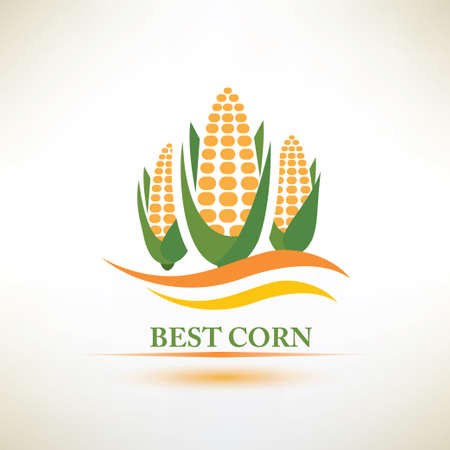 corn crop: corn vector symbol